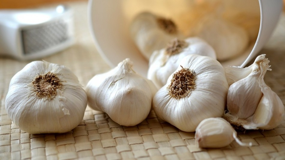These are the effects of consuming garlic every day on vital organs